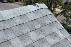 roof24